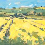 Fields of rape, Avebury